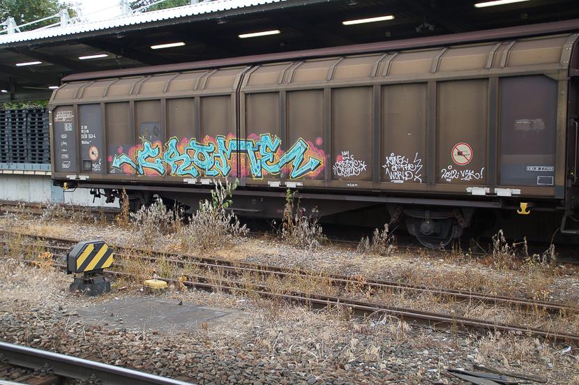 STGT-07396