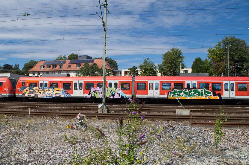 STGT-01922