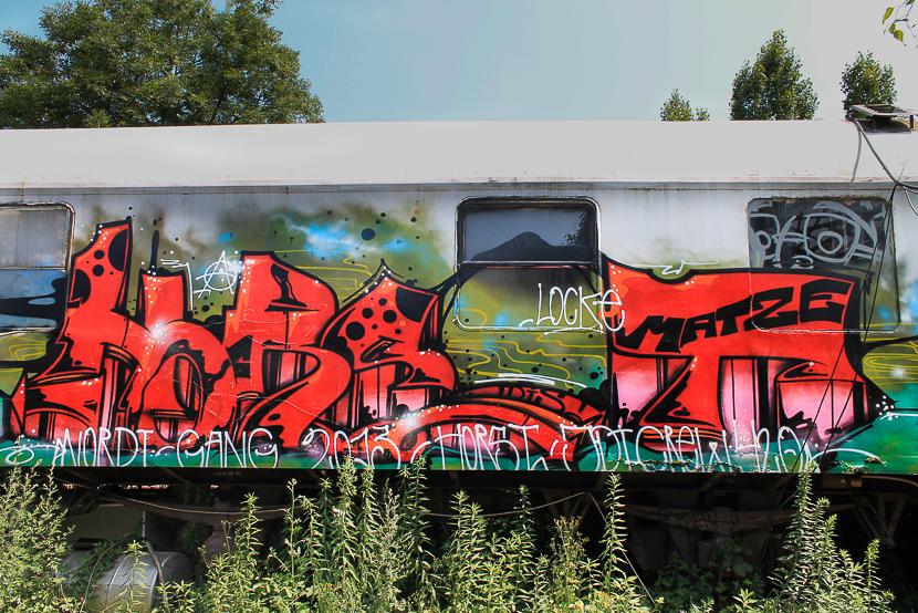 STGT-1173