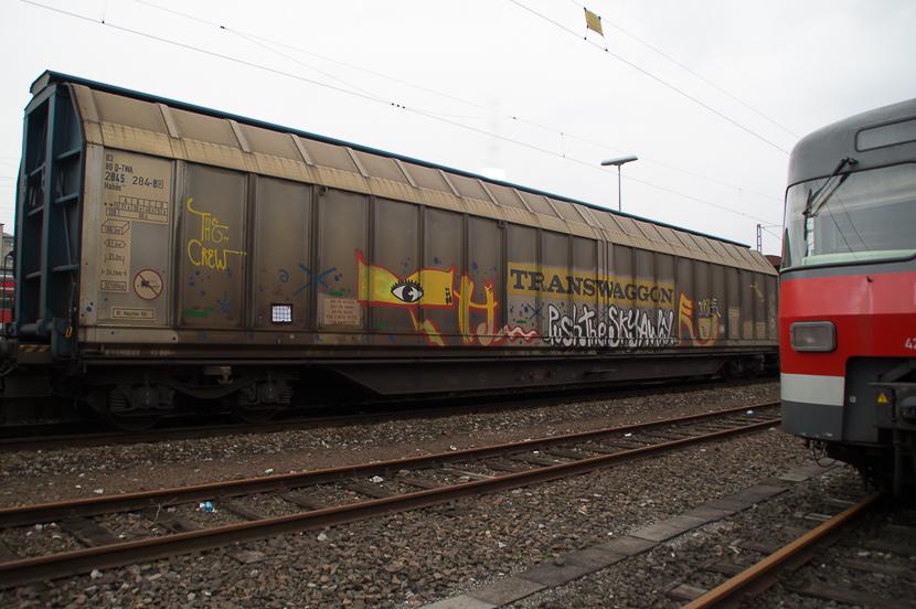 STGT-01293