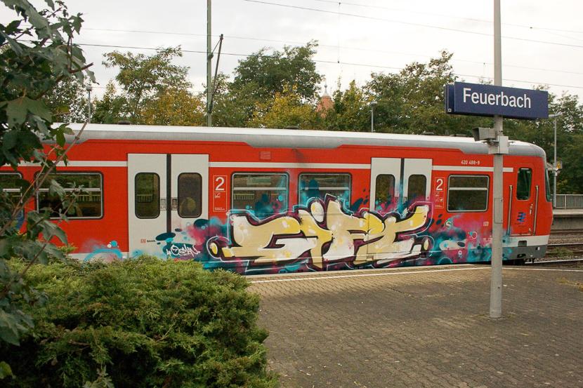 STGT-43842