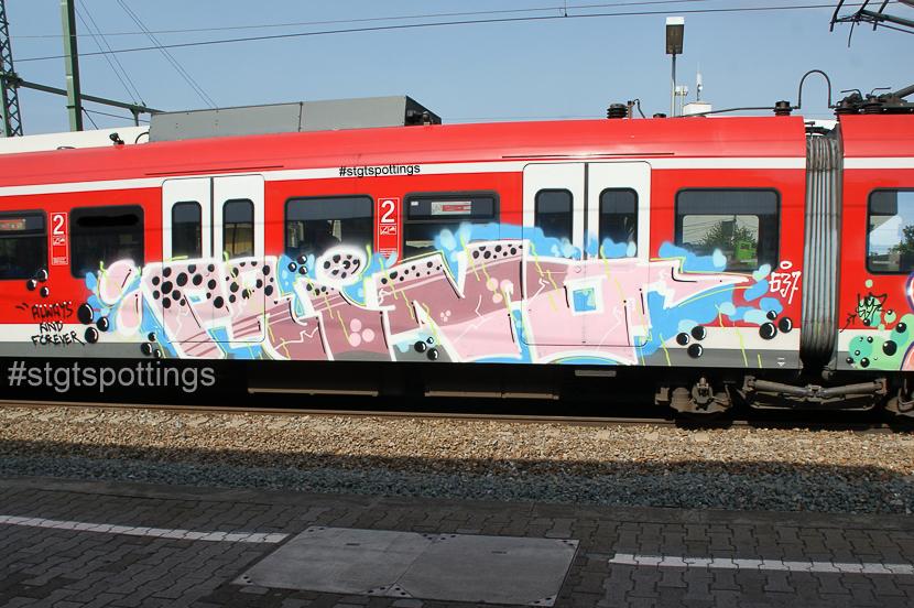 STGT-03884