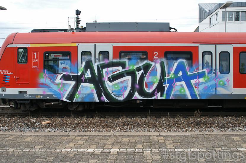 STGT-01232
