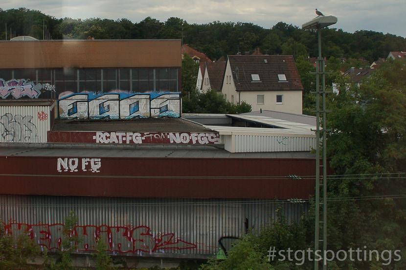 STGT-01816