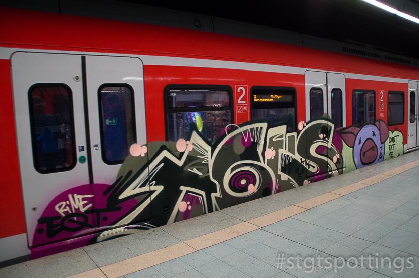 STGT-03246