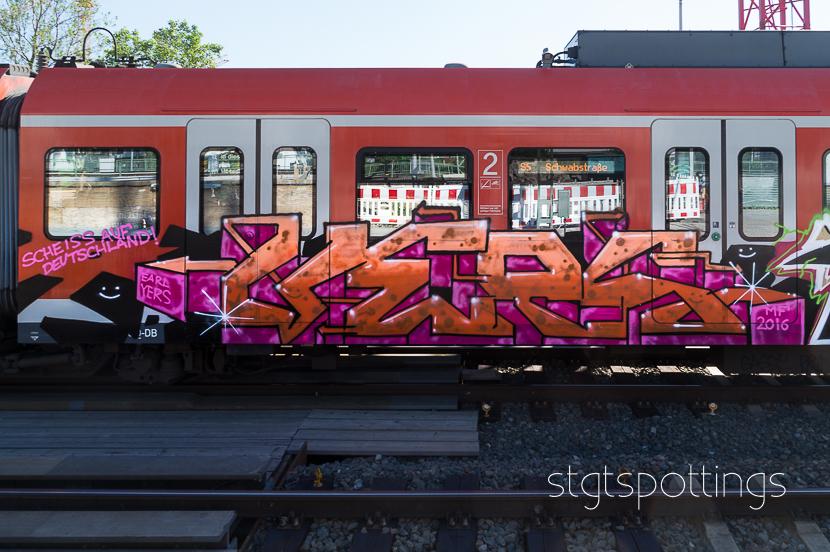 STGT-05816
