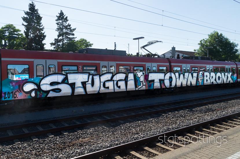 stgt-05828